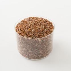 riz rouge bio complet de Camargue IGP détail