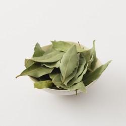 laurier sauvage bio Flore en thym en vrac par 25 g