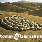 pub woolmark