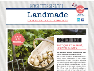 Newsletter Landmade